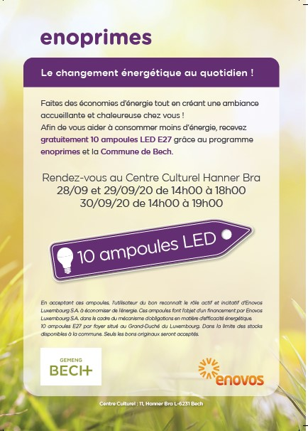 Action 10 ampoules LED