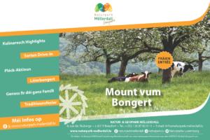 Mount vum Bongert